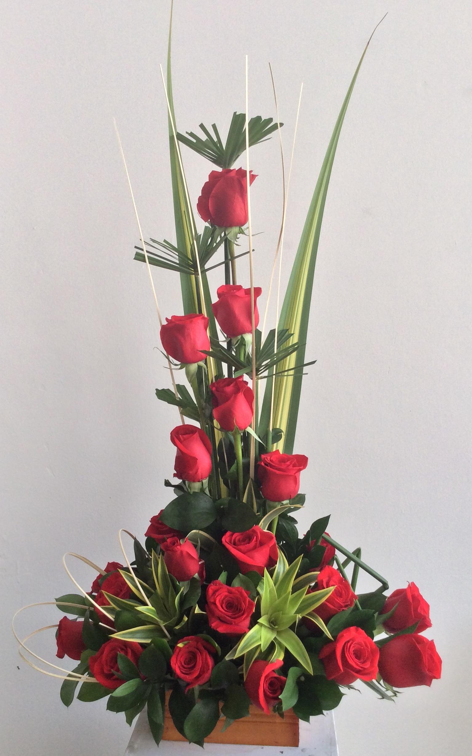 rosas 15